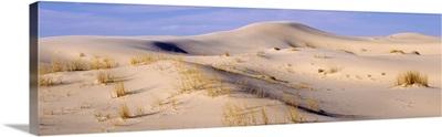 Sand dunes Monahans Sandhills State Park TX