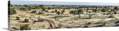 Scenic view of a landscape, Mashatu Game Reserve, Botswana