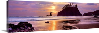 Sea stacks at sunset, Second Beach, Olympic National Park, Washington State