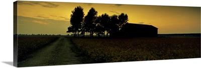 Silhouette of a farmhouse at sunset, Polesine, Veneto, Italy
