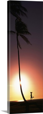 Silhouette of a woman running on the beach, Magic Island, Hawaii