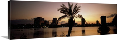 Silhouette of buildings at the waterfront, Lake Eola, Summerlin Park, Orlando, Orange County, Florida