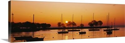 Silhouette of sailboats in a lake, Lake Michigan, Chicago, Illinois