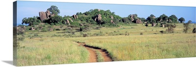 Simba Kopjes and Road Serengeti Tanzania Africa