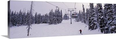 Ski lift passing over a snow covered landscape, Keystone Resort, Keystone, Summit County, Colorado