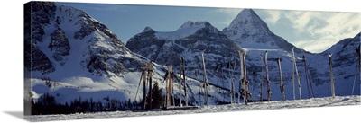 Skis and ski poles on a snow covered landscape, Mt Assiniboine, Mt Assiniboine Provincial Park, British Columbia, Canada