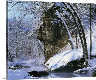 Snow-covered trees and rocks along Richmond Springs, Backbone State Park, Iowa