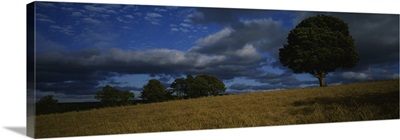 Storm clouds over a field, Republic of Ireland