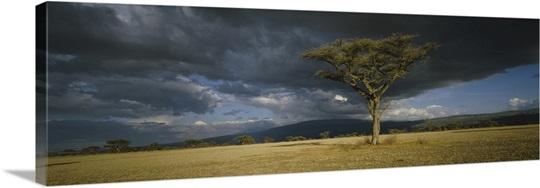 Storm clouds over a landscape, Tanzania