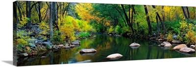 Stream Cottonwood Canyon AZ