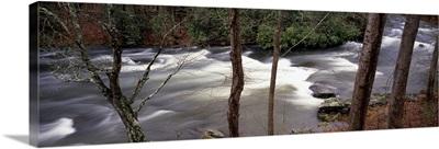 Stream flowing through a forest, Appalachian Mountains, North Carolina,