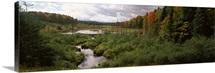 Stream flowing through a forest, Ottawa National Forest, Upper Peninsula, Michigan