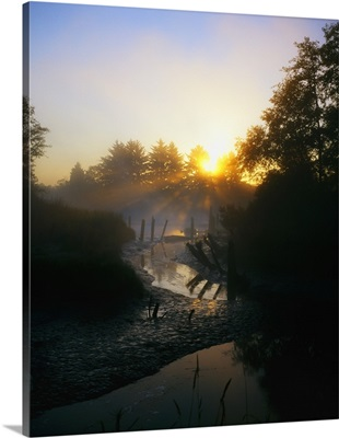 Sunrise Through Mist