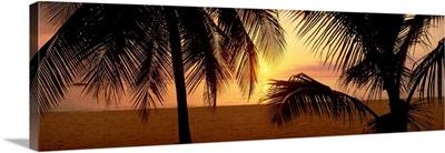 Sunset on 7-Mile Beach, Negril, Jamaica