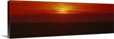 Sunset over a grain field, Carson County, Texas Panhandle, Texas