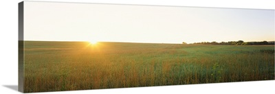 Sunset over a landscape, Iowa County, Wisconsin,