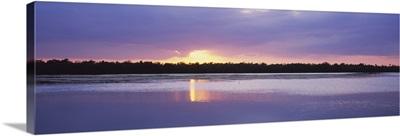 Sunset over the forest, J. N. Ding Darling National Wildlife Refuge, Sanibel Island, Florida