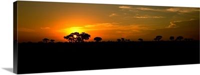 Sunset over the savannah plains, Kruger National Park, South Africa