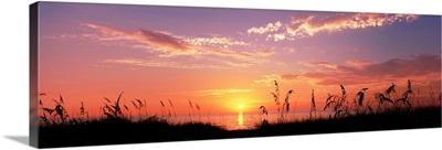 Sunset over the sea, Venice Beach, Sarasota, Florida