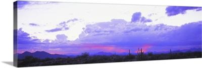 Sunset Sonoran Desert Tonto National Forest Arizona