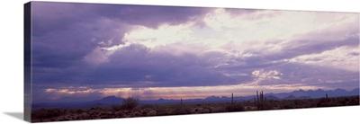 Sunset Sonoran Desert Tonto National Forest AZ
