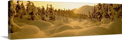 Sunset Turnagain Pass AK