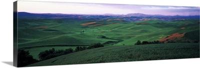 Sunset Wheat Fields Whitman County ID