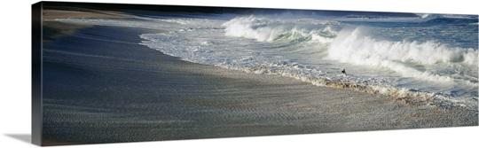 Surfer With Crashing Waves on Beach Waimea Bay HI