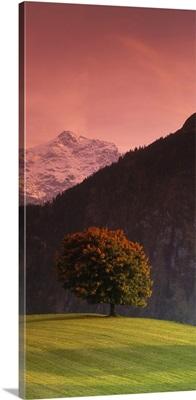 Switzerland, Alps