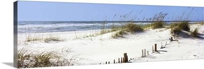 Tall grass on the beach, Gulf Islands National Seashore, Pensacola, Florida II