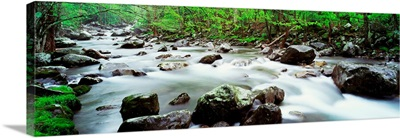 Tennessee, Great Smoky Mountains National Park, Little Pigeon River, View of water flowing over rocks