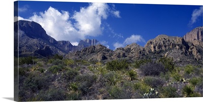 The Chisos Mountains Big Bend National Park TX