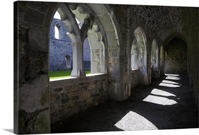 The Cloisters in Killmallock 12th Century Dominican Friary, Co Limerick, Ireland
