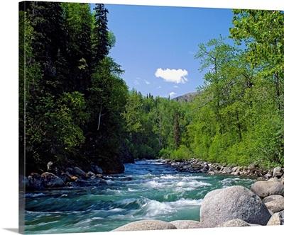 Trees and rocks along clear mountain stream, spring, Alaska
