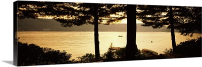 Trees at the lakeside, Oquaga Lake, Deposit, Broome County, New York State