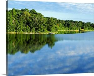 Trees Growing Along Big Creek Lake Water Reflection Big
