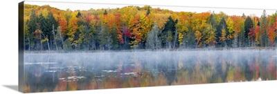 Trees in autumn at Lake Hiawatha, Alger County, Upper Peninsula, Michigan