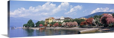 Trees in blossom, Varenna, Lake Como, Lecco Province, Lombardy, Italy