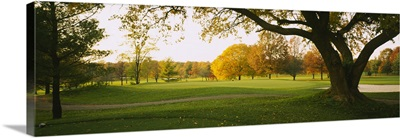Trees on a golf course, Westwood Country Club, Vienna, Virginia