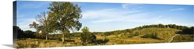 Trees on hills Little Round Top Gettysburg Adams County Pennsylvania