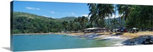 Trees on the beach Arapito Beach Mochima National Park Anzoategui State Sucre State Venezuela