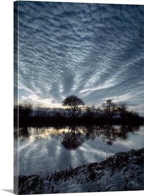 Trees & Sky River Earn Tayside Scotland