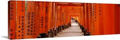 Tunnel of Torii Gates Fushimi Inari Shrine Kyoto Japan