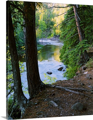 View of Gooseberry River through forest trees, Gooseberry Falls State Park, Minnesota