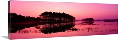 Virginia, Chincoteague National Wildlife Refuge, Panoramic view of the national forest during sunset