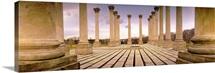Walkway surrounded by freestanding columns, US Capitol Columns, National Arboretum, Washington DC