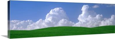 Washington, Palouse, wheat and clouds