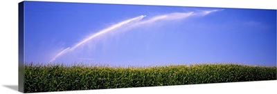 Water being sprayed on a corn field, Washington State