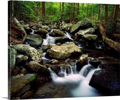 Water cascading over rocks, LeConte Creek, Great Smoky Mountains National Park, Tennessee