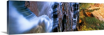 Waterfall in a forest, North Creek, Zion National Park, Utah